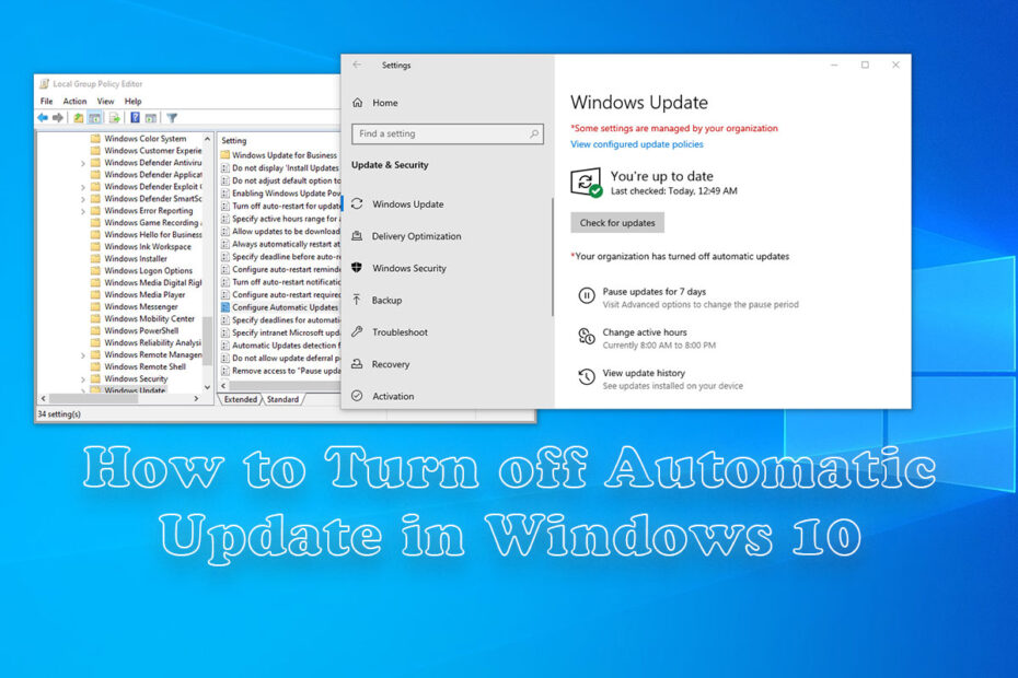 How-to-Turn-off-the-Automatic-Update-in-Windows-10