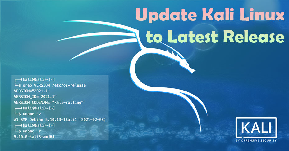 Update Kali Linux into the Latest Release